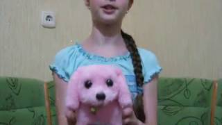 Собачка Интерактивная игрушка Ходит , виляет хвостом и лает Покупка из Fix Price