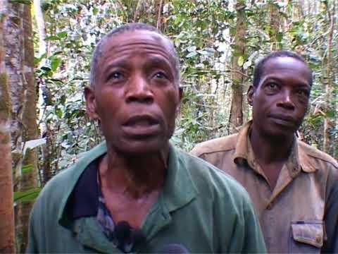 Gabon : Province de Ngounié