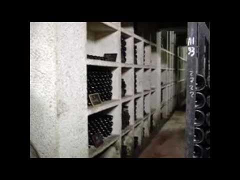 Concrete Wine Cellar