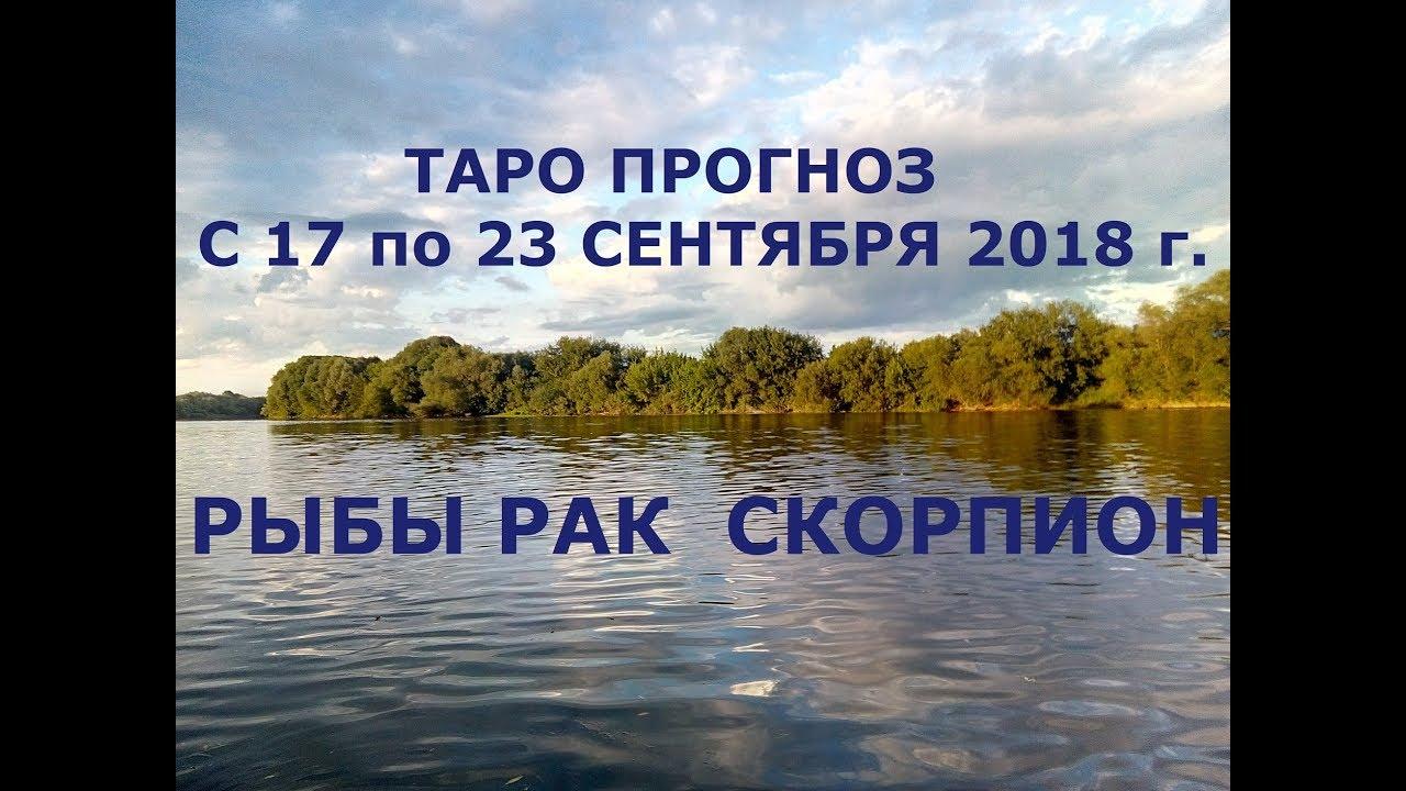 Таро прогноз на неделю с 17 по 23 сентября для Раков, Скорпионов и Рыб.