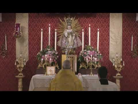 Holy Hour: 6 PM (CT)
