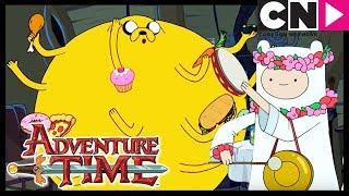 Время приключений Ты ли это Cartoon Network