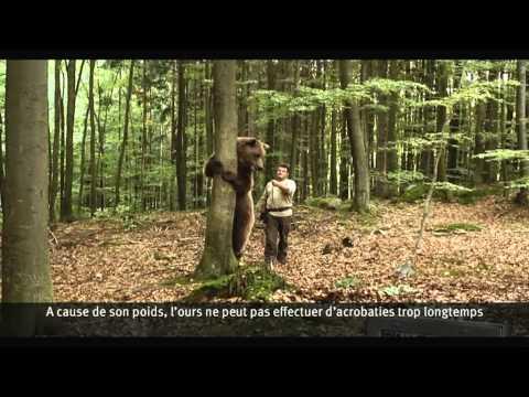 Interview du dresseur d'ours de la nouvelle publicité Bouygues Telecom