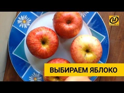 Самое вкусное яблоко. Секреты выбора лучших фруктов