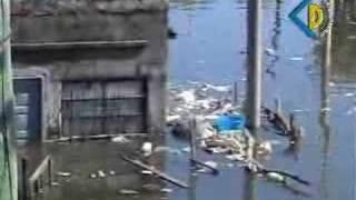Compilado del Barrio Santa Rosa de Lima y Barrio Chalet