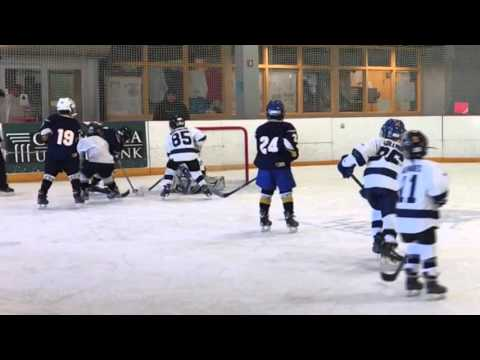Consolation Game: Pasadena Maple Leafs vs Ventura Mariners. ADM Mites Track 1 11-29-2015)