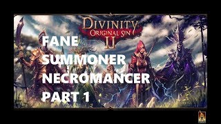 Divinity Original Sin 2 - Fane Summoner/Necromancer Part 1