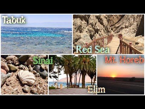 SAUDI- TABUK VLOG -JABAL AL LAWZ(Mt. Horeb)- ELIM- MAQNAH- JETHRO'S TOMB- HAQL- RED SEA (EP 127)