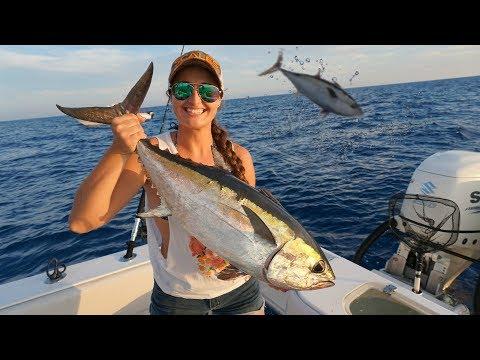 INSANE Tuna and Bonita Feeding Frenzy in Key West Florida Catch, Clean, Cook
