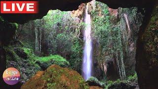 Escape to nature live stream on Youtube.com