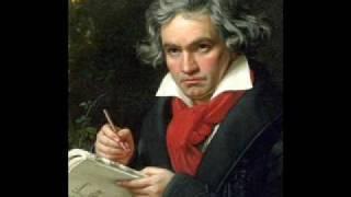 Symphony 1- I. Adagio molto - Allegro con brio