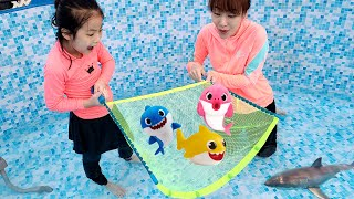 수영장에서 상어를 잡아요!! 서은이의 수영장 물고기 잡기 아기상어 상어 무선 조정 물놀이 Catch sharks in the Pool