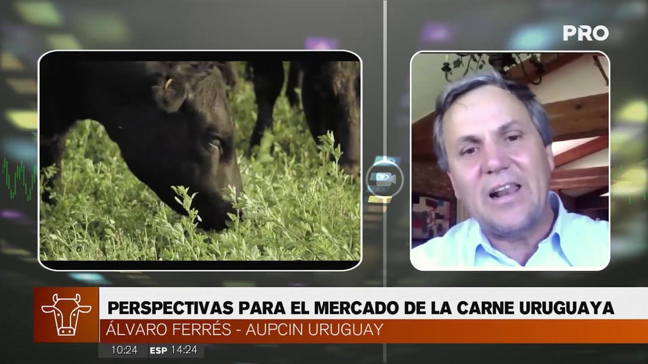 El mercado de la carne en Uruguay