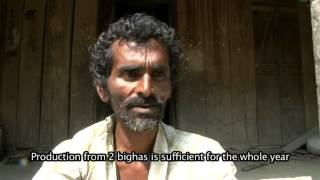 SRI Dhaan- A film on System of Rice Intensification (SRI)- Assam_Part 2