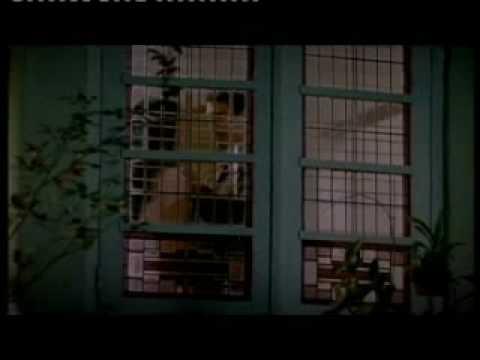 trailer film alexandria