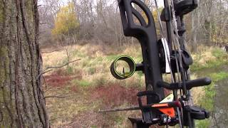 2016 public land Ohio Bow Hunting