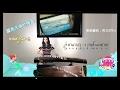 蓝色大海的传说 Guzheng Cover Windflower 古筝 By 周王的fei (fei Chou )    LEE SUN HEE(이선희)  WindFlower(바람꽃)