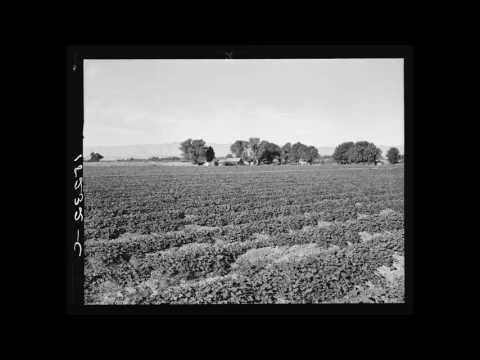 Portuguese American Folk Music (CA): Charamba