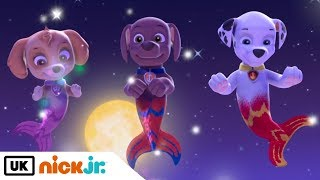 Video Paw Patrol | Pups Save Puplantis Part 1 | Nick Jr. UK download MP3, 3GP, MP4, WEBM, AVI, FLV Agustus 2019
