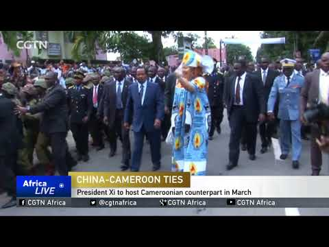 Xi Jinping to host Cameroonian counterpart in March