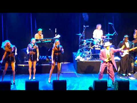 Kid Creole and the Coconuts live paradiso 2017