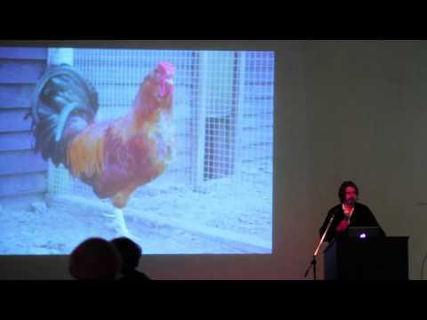 """Artist Talk: Koen Vanmechelen, """"Cosmopolitan Chicken Project"""""""