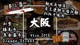 【大阪Vlog#3】日本美食自由行:勝尾寺、箕面瀑布、紅葉、松阪牛、米芝蓮拉麵、難波居酒屋 | 旅遊攻略2019
