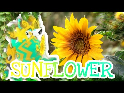 AJMV Sunflower - Post Malone & Swae Lee (Spiderman Into the Spiderverse) CHILL
