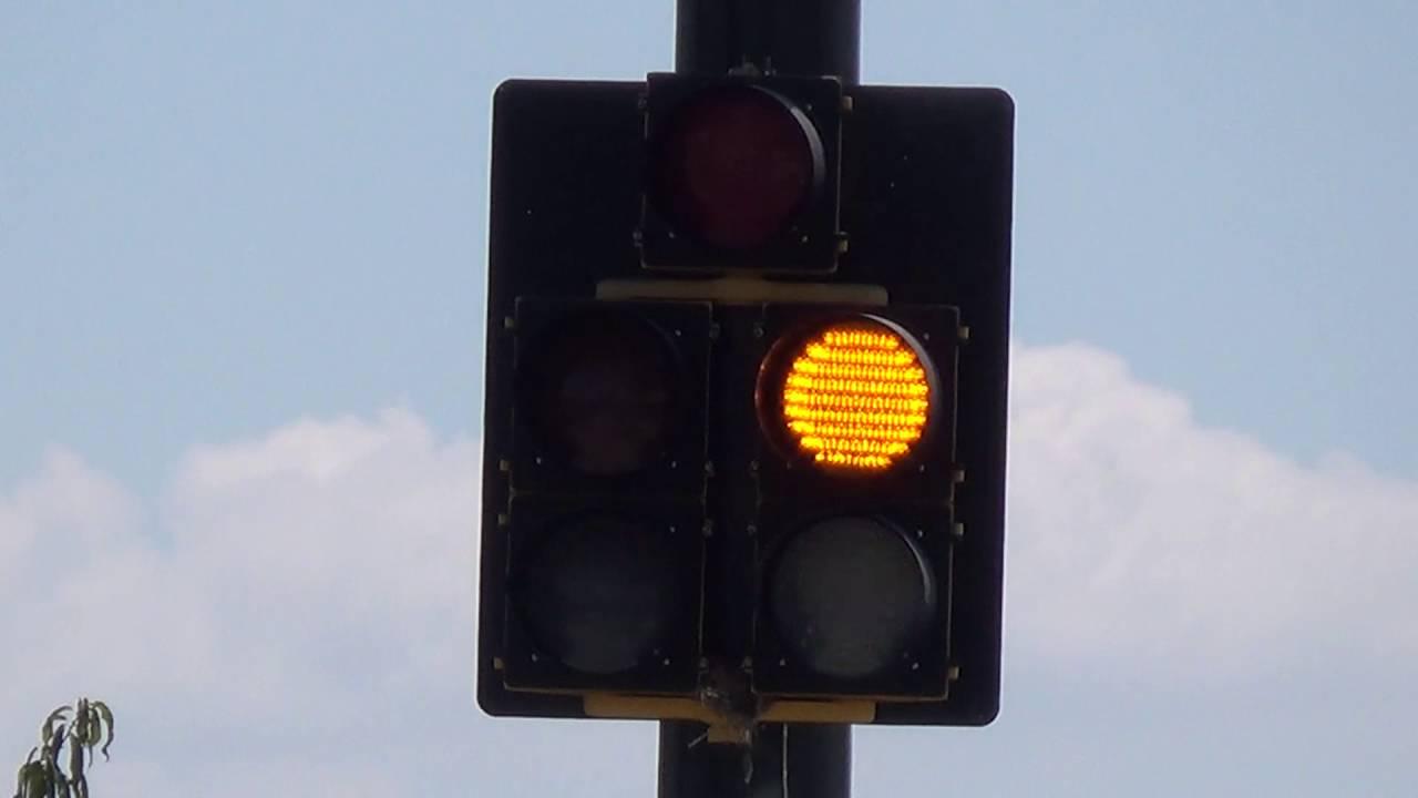 Mccain Doghouse Traffic Light Youtube
