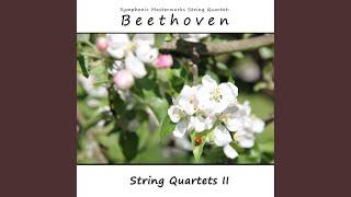 String Quartet No. 2, Op. 18 No. 2: IV. Allegro molto, quasi presto