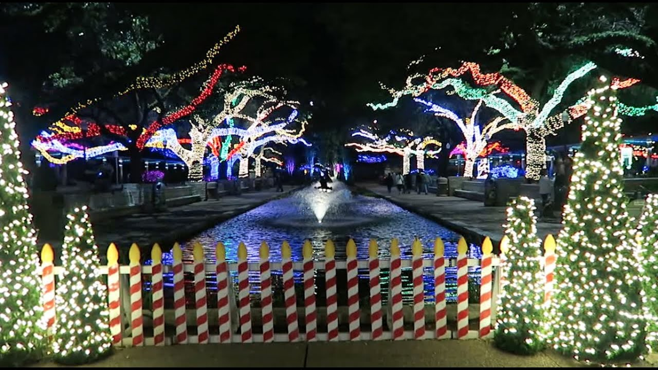 christmas lights at the zoo houston zoo lights 2015 youtube