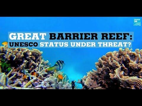 Great Barrier Reef: UNESCO status under threat?