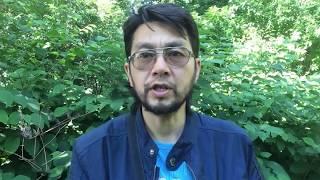 Еда Монахов: Буддизм, Индуизм, Православие, Мормоны. (личный опыт) Экс Буддисткий монах