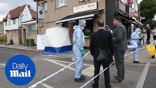Man arrested on suspicion of murder after a woman was killed - Daily Mail