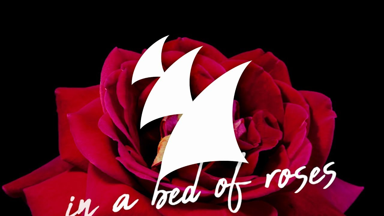 Afrojack Feat Stanaj Bed Of Roses Official Lyric Video Youtube