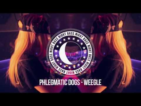 Phlegmatic Dogs - Weegle