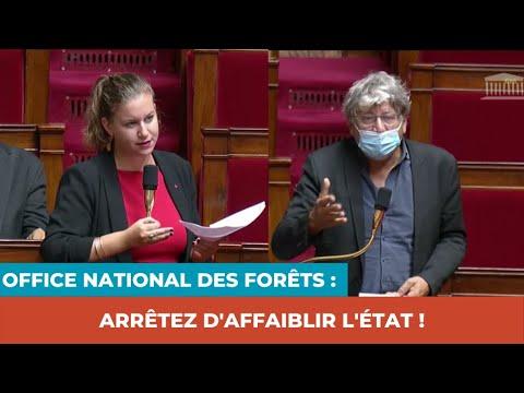 OFFICE NATIONAL DES FORÊTS : ARRÊTEZ D'AFFAIBLIR L'ÉTAT !