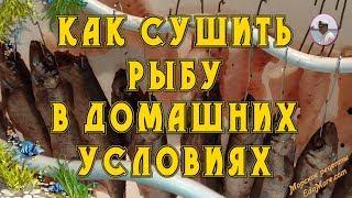 Как сушить рыбу в домашних условиях фото и видео от Petr de Cril'on & SonyKpK