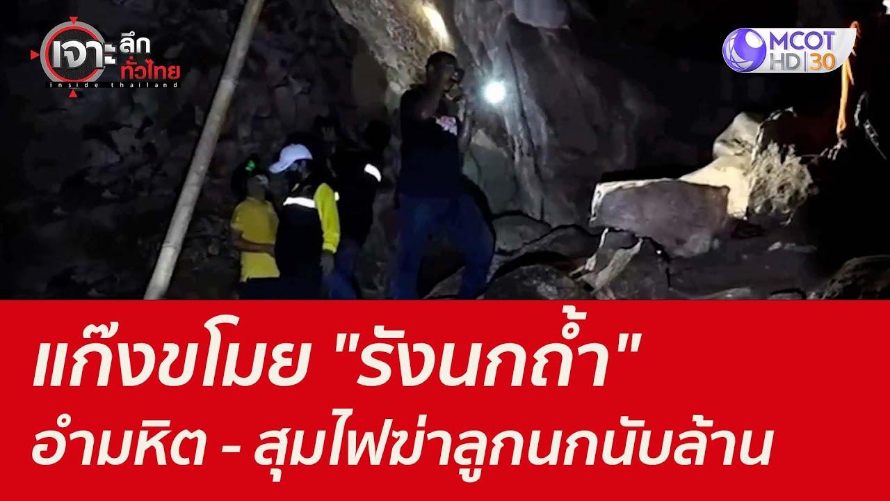 """Download แก๊งขโมย """"รังนกถ้ำ"""" อำมหิต - สุมไฟฆ่าลูกนกนับล้าน : เจาะลึกทั่วไทย (16 ก.ย. 64)"""