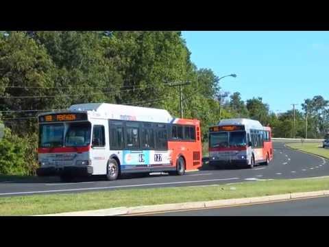 WMATA Metrobus: Bus Observations (August 22, 2016) - Part 3/3 [#W013]