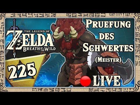 THE LEGEND OF ZELDA BREATH OF THE WILD Part 225: Prüfung des Schwertes (Meister) - Live