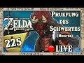 THE LEGEND OF ZELDA BREATH OF THE WILD Part 225 Prüfung Des Schwertes Meister Live mp3