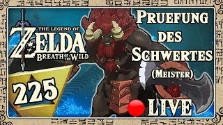 🔴 THE LEGEND OF ZELDA BREATH OF THE WILD Part 225: Prüfung des Schwertes (Meister) - Live