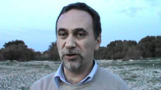 Calendula maritima. Sopralluogo a punta Tipa a Trapani. Angelo Troia e F. Salerno. 29.11.2011