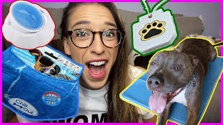 Summer Pet Dog Toys And Products