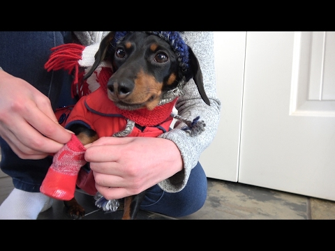 Crusoe Says 'Heck with the Boots' with Morton Salt's Ice Melt