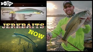 Jerkbait Fishing for Bass: Tips to Maximize Success