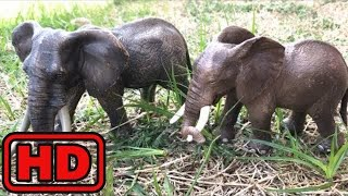 Kid -Kids -Lot of Zoo Wild Animals in Water/Real Safari Videos And Schleich Toys/Learn Colors For C