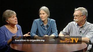 Citrus Greening Disease and Nontoxic Solutions