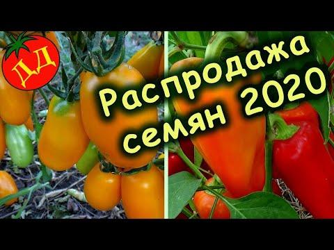РАСПРОДАЖА СЕМЯН 2020 (и новые сорта на 2021 г.)